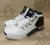 wholesale nike air jordan 17 shoes